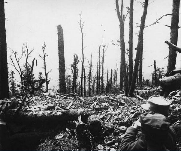 Les pentes du HWK 20 juin 1915