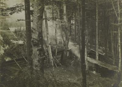 Abris 20 juin 1915