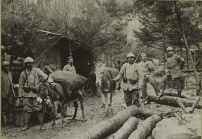 camp-ayne-cuisines-anes-de-ravitaillement-12-nov-1916-1.jpg