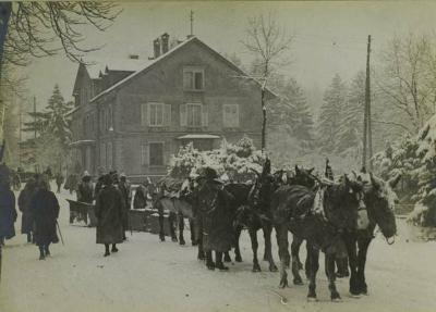 Chasse neige 22 fevrier 1916