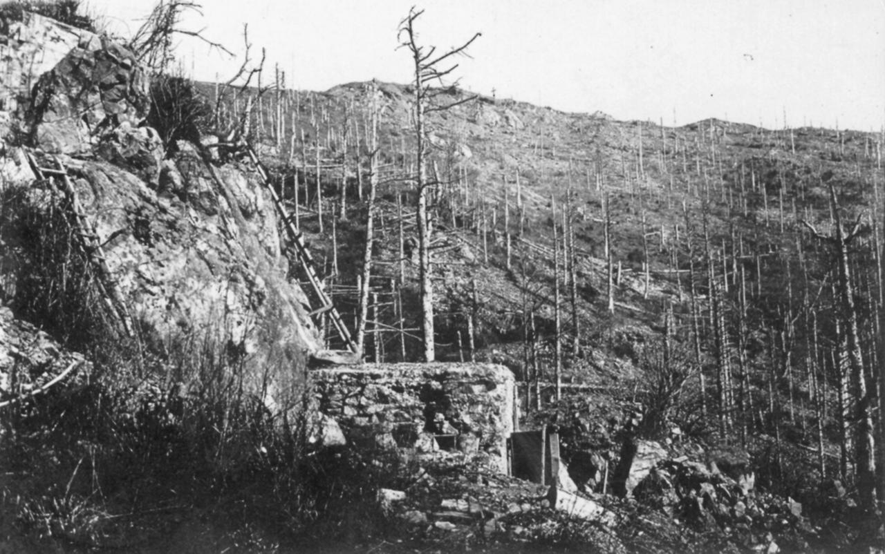 Hartmannswillerkopf   E Monsite