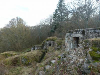 rocher-fortifie-du-bischofshut.jpg
