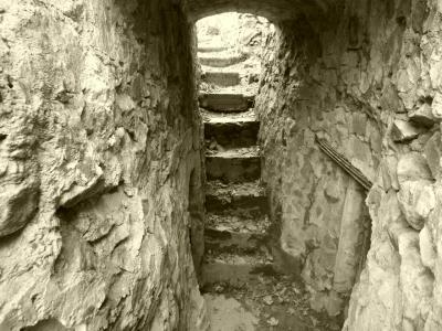 sengern-tunnel.jpg