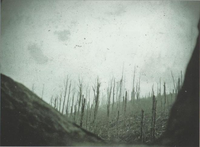 vue-hwk-septembre-1916.jpg