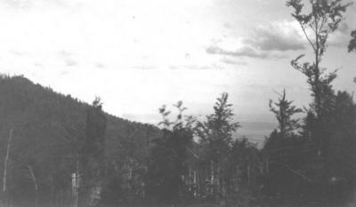 Vue plaine depuis wolfskopf 1918